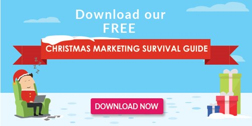 Christmas-Survival-Guide-CTA-Image.jpg (1)